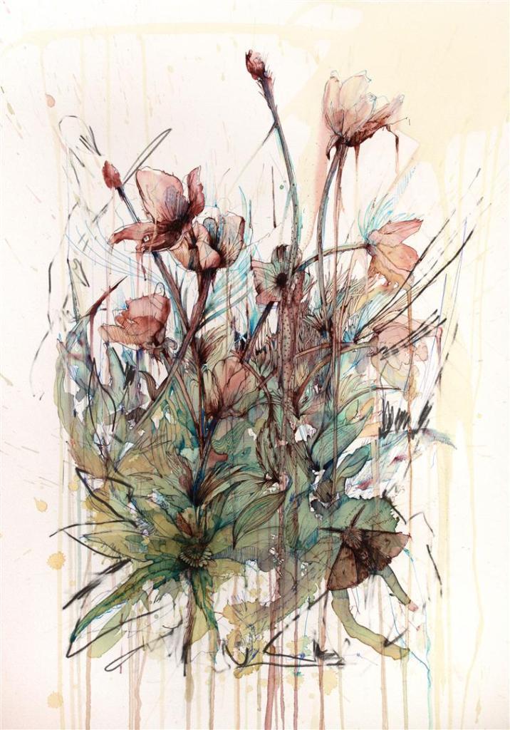 poppy-56x76cm-c2a31220-framed